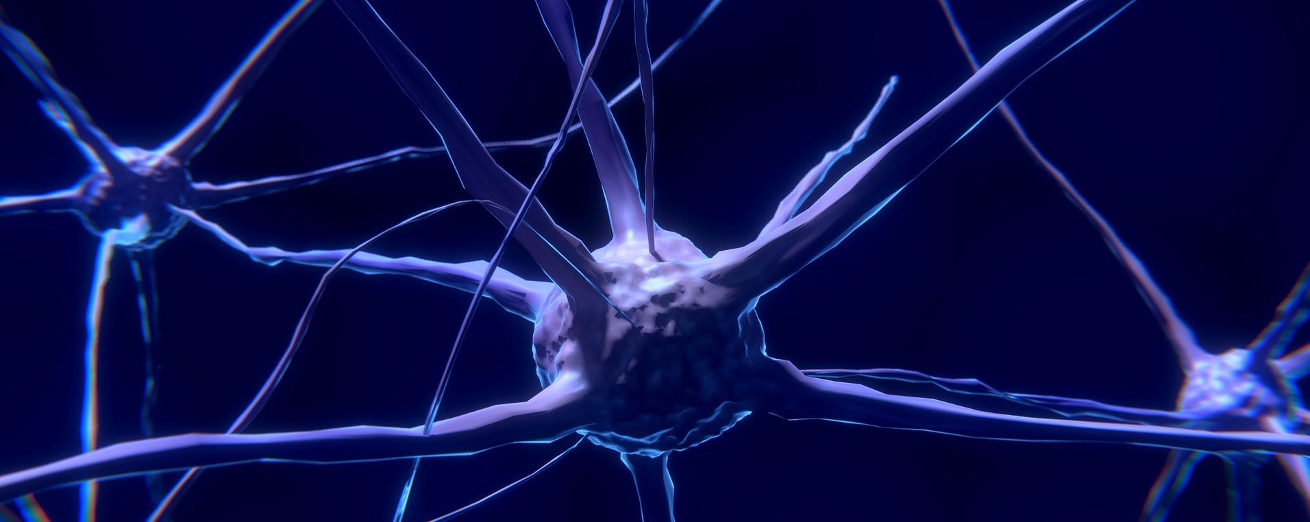 Autonomiczny układ nerwowy u dzieci z autyzmem.