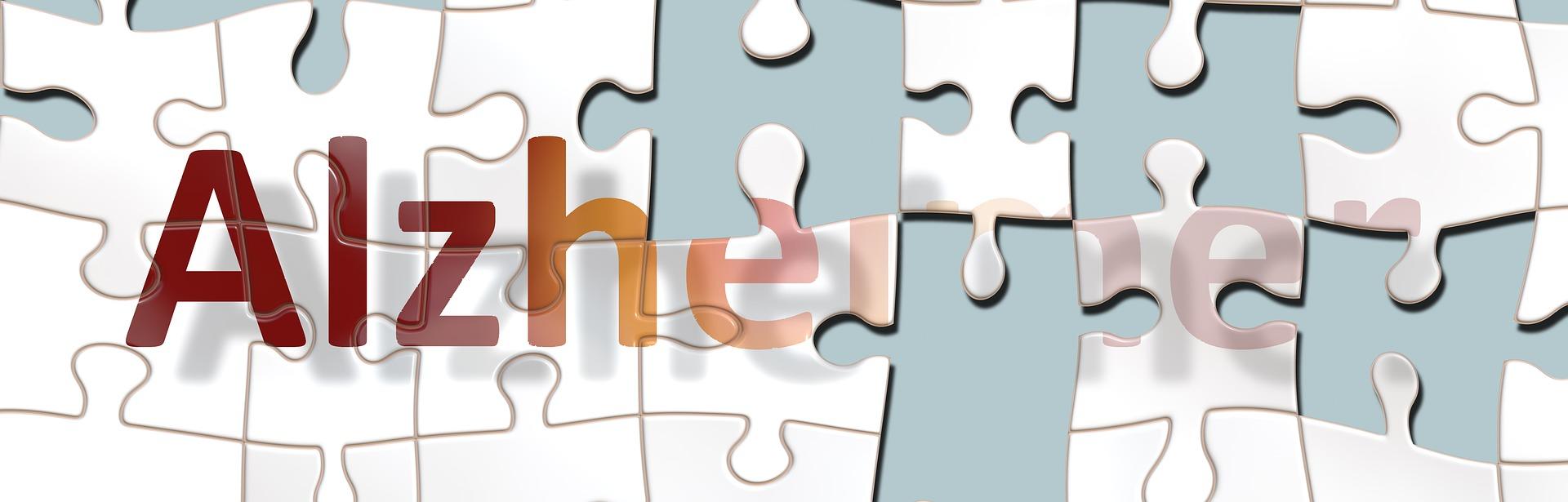 Antyoksydant MitoQ w przypadku choroby Alzheimera